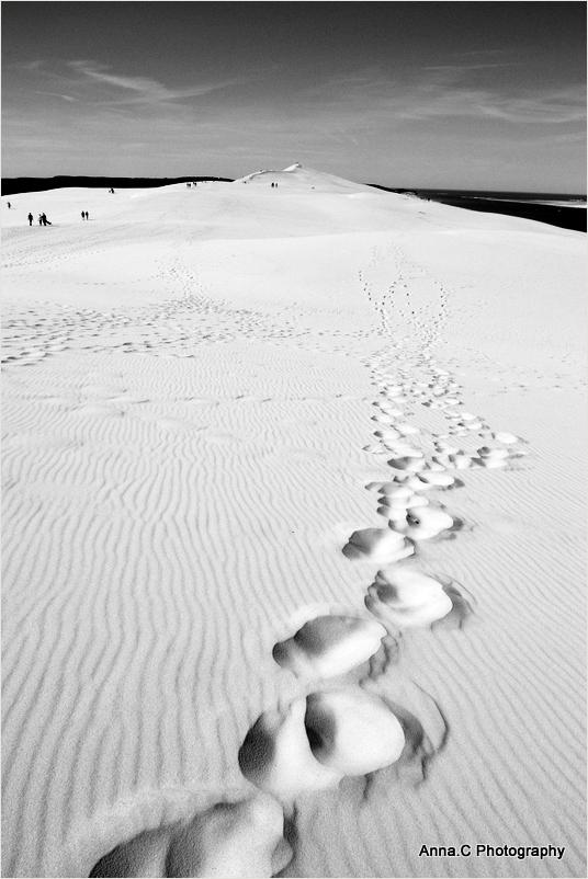 A l'assaut de  la haute dune