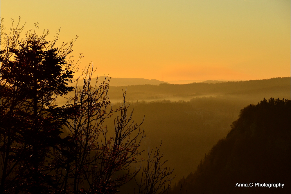 La vallée dorée