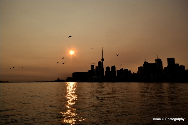 Farewell Toronto