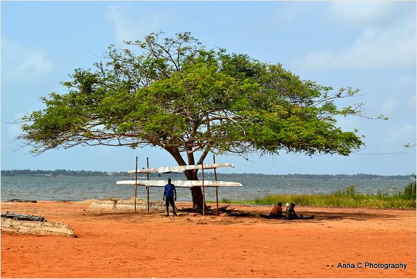 Sur la rive du Lac Togo