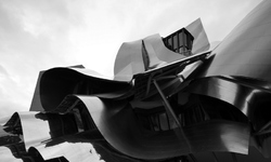 The Frank Gehry Style # 1