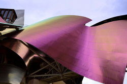 The Frank Gehry Style # 2