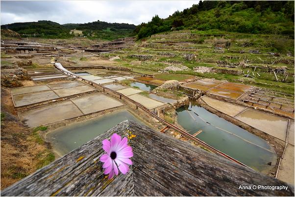 La vallée salée de salinas de Añana