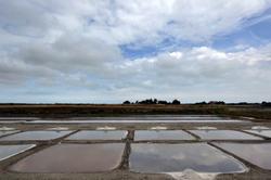 Les marais salants de l'Ile de Ré