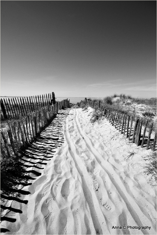 The path to the Ocean