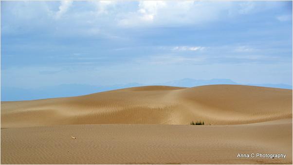 La douceur des dunes