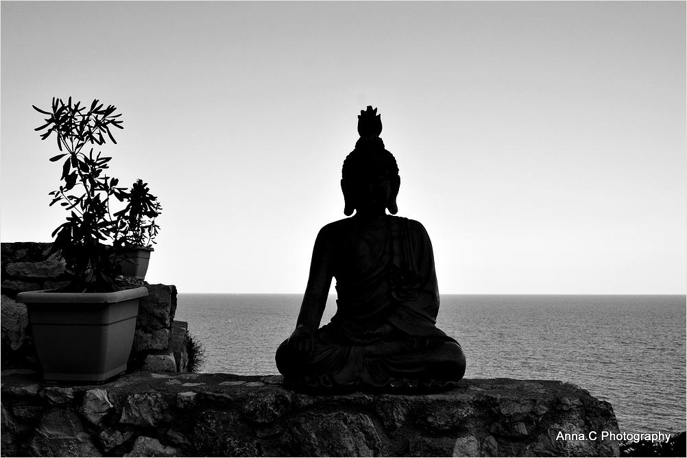 Une Année Zen
