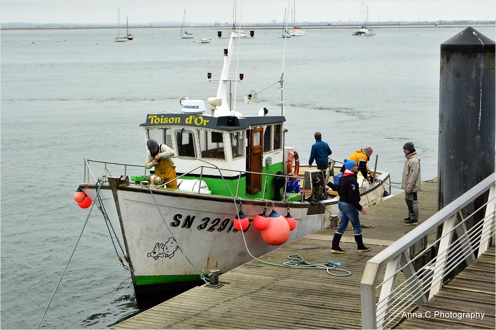 Retour de pêche #2