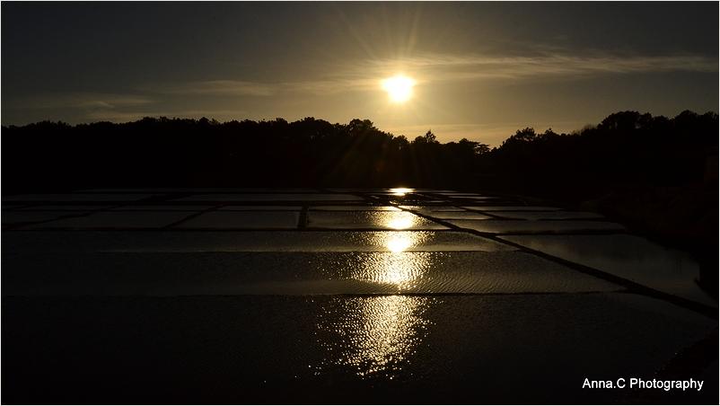 Soleil couchant sur les marais salants