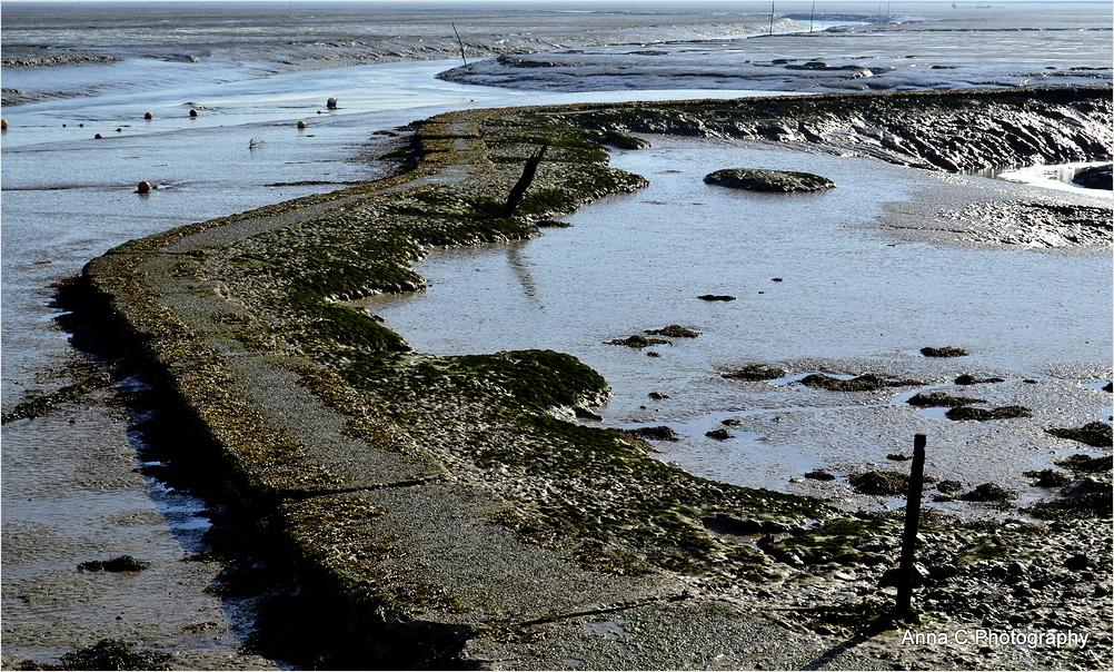 Un chemin à marée basse