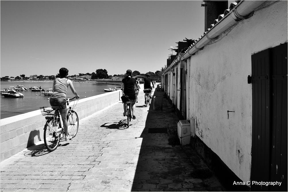 Les vélos de Ré