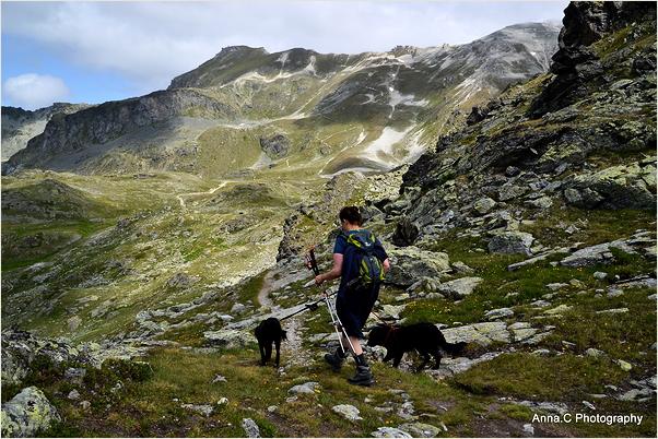 La randonneuse et ses chiens