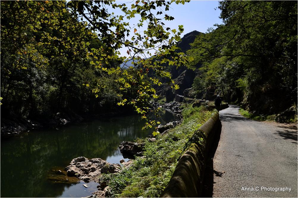 La petite route le long de la Nive