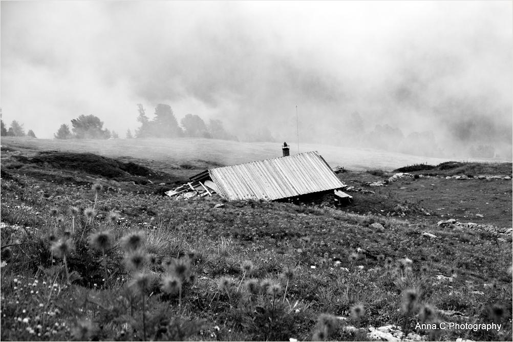 La cabane dans la brume