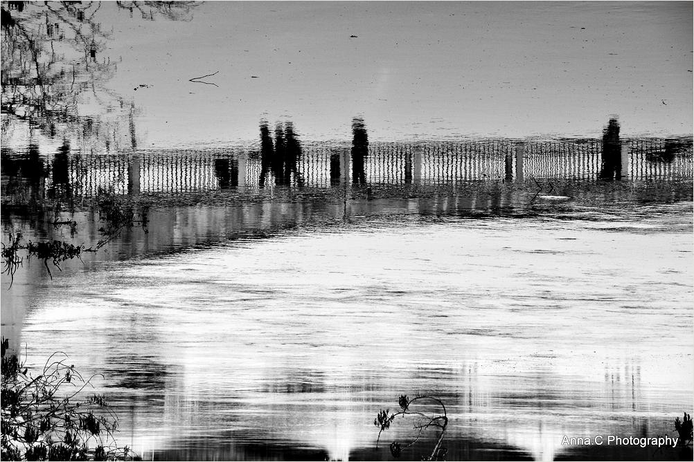 Les passagers de la rivière