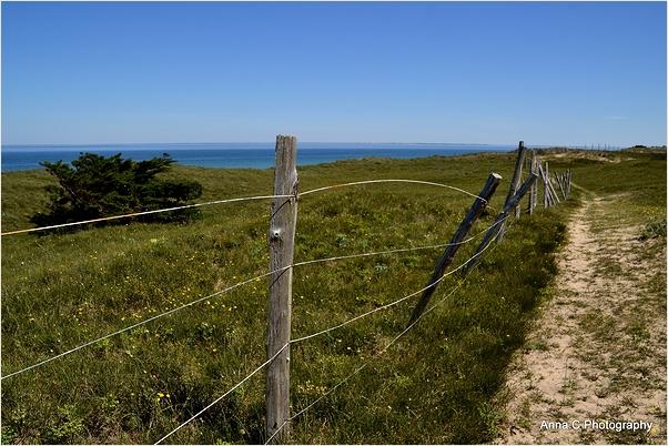 Le chemin des dunes
