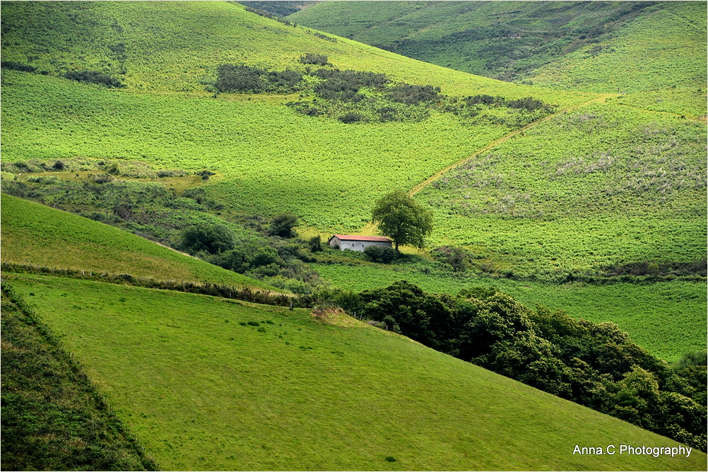 les lumières du pays-basque