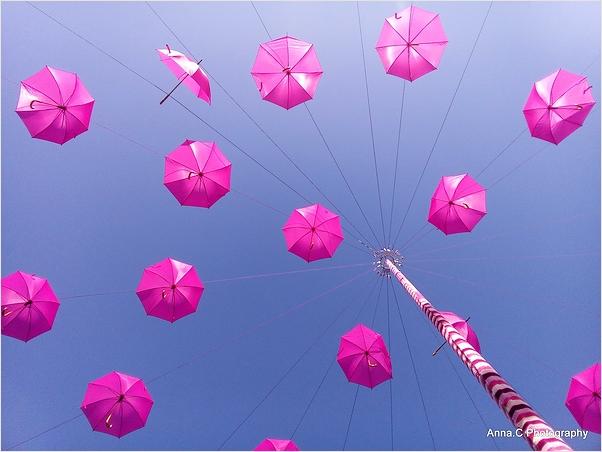 Les parapluies d'Octobre rose