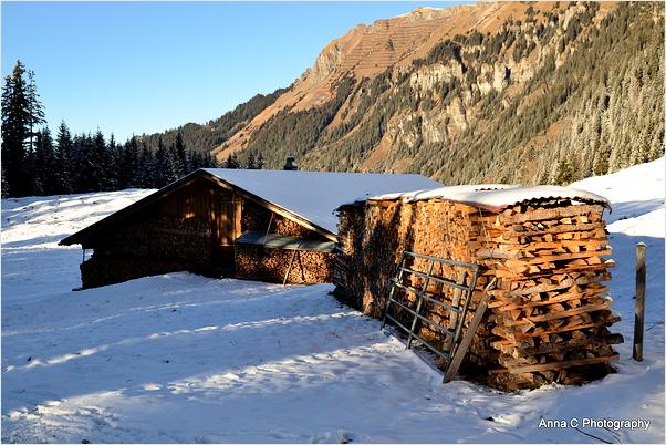 Une réserve pour l'hiver