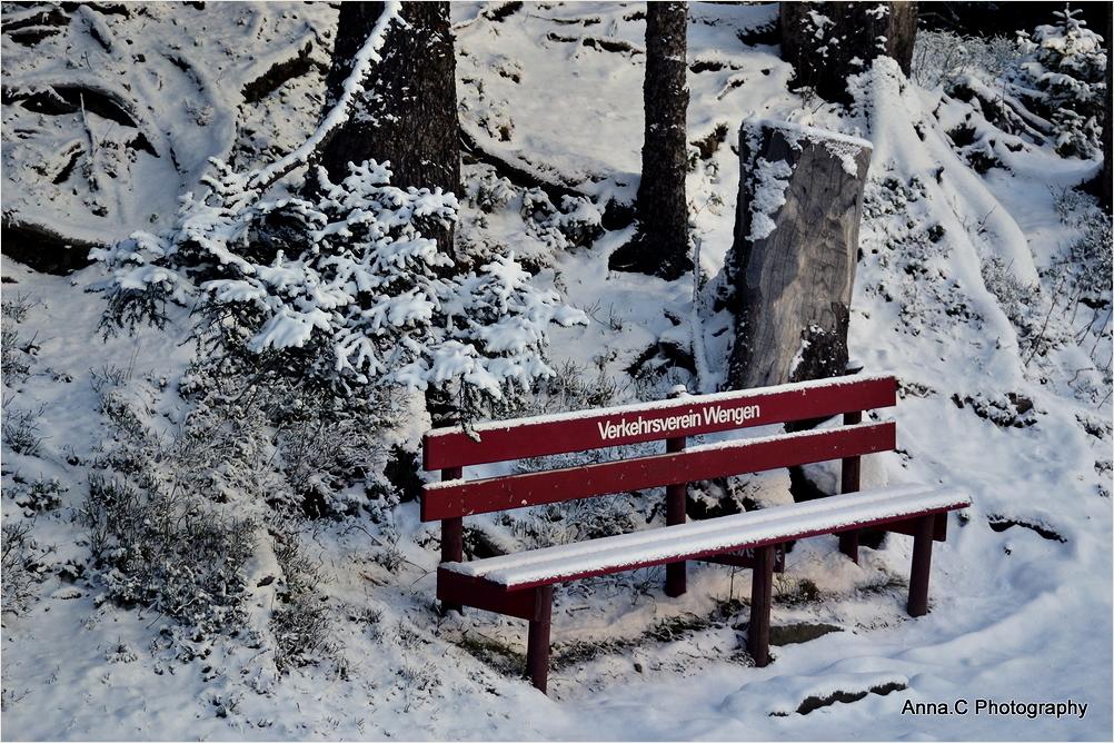Un banc en hiver
