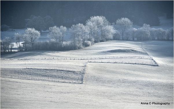 Les champs gelés