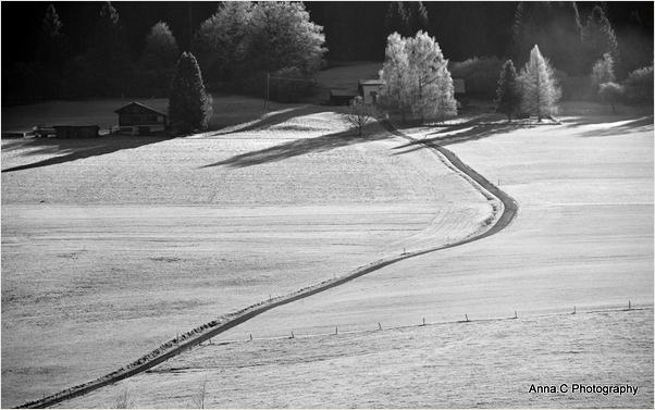 La petite route dans la neige