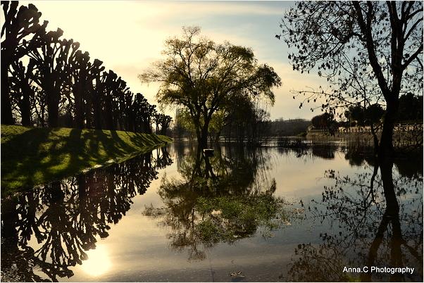 La crue de la Charente # 1