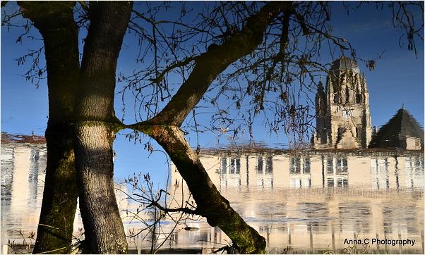 La crue de la Charente # 2