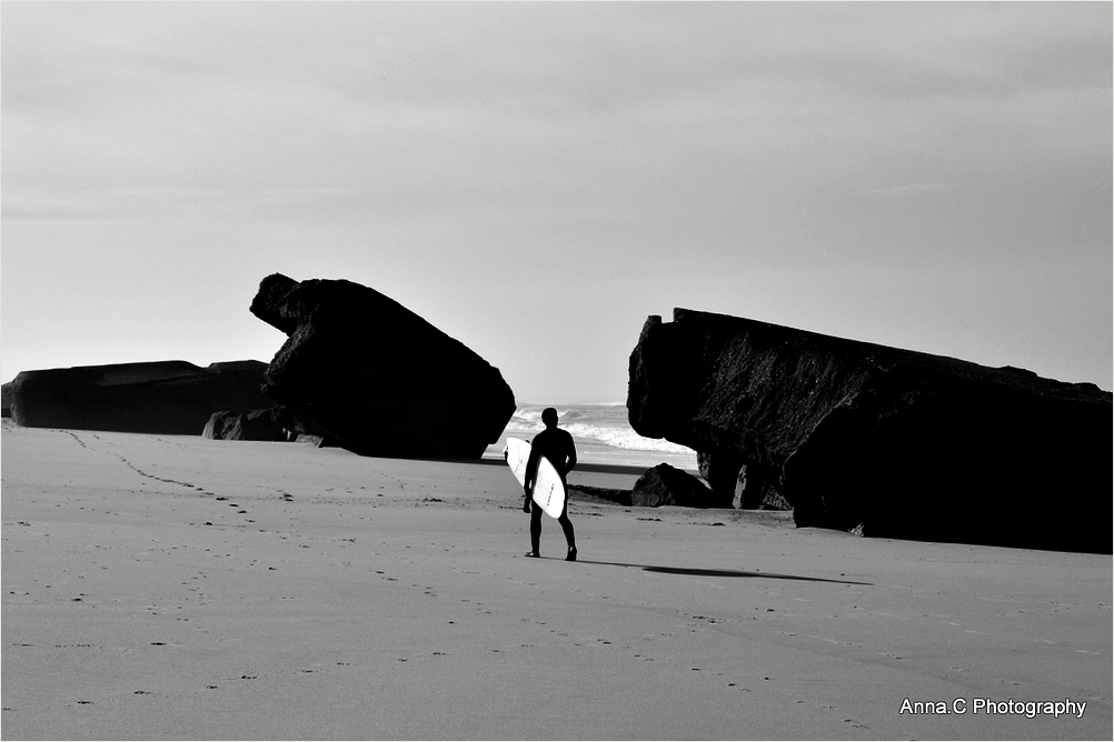Le surfeur