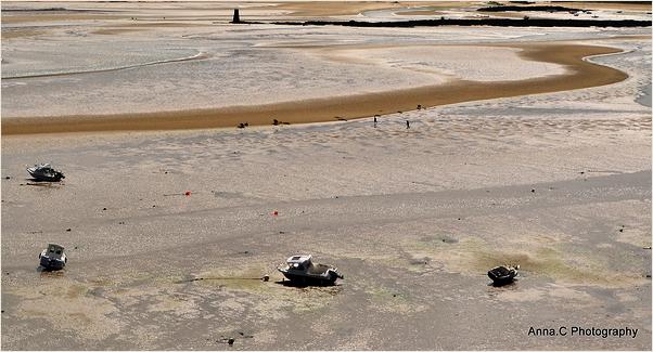 Méandres à marée basse