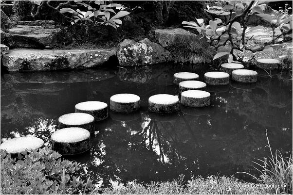 Chemin zen