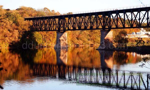 Fall in Cambridge
