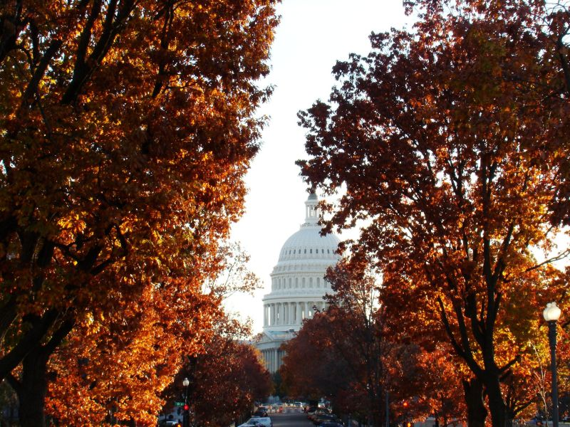 fall, washington dc, travel