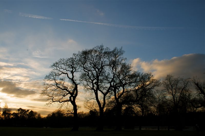cannon hill frozen, birmingham,