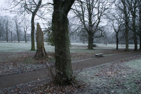 Birmingham Highbury Park cold winter