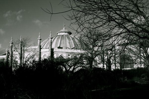 Brighton dome, Museum, Sussex, pavilion