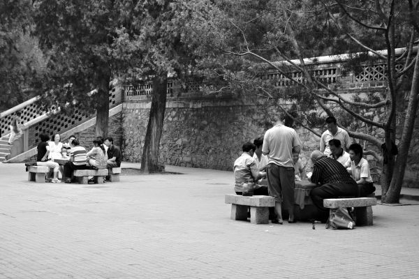 Summer palace, people, China, public space
