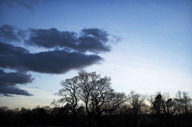 cannon hill, park, birmingham, lake, spring