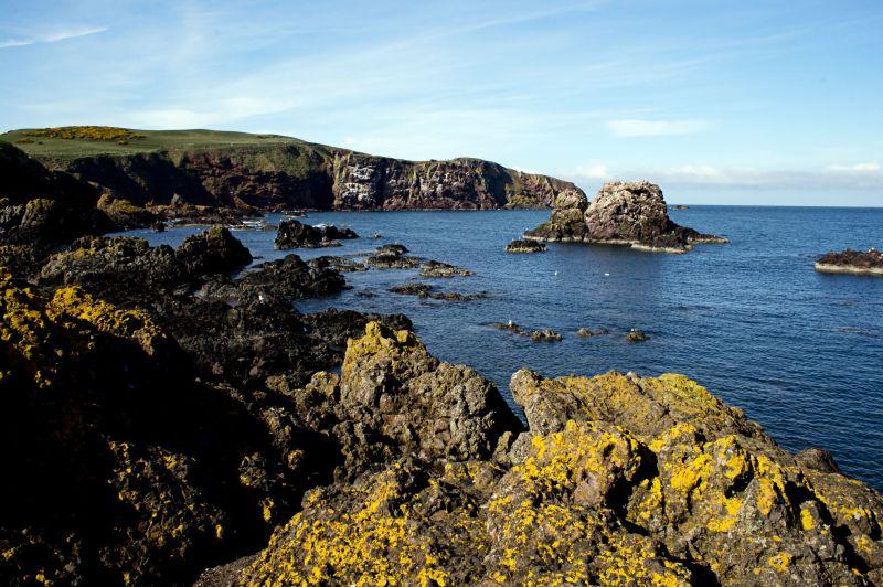 st abb's head, coast, scotland, travel