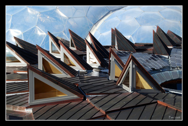 roof, Eden Project, Cornwall
