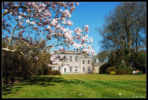 Trewithen House, Cornwall