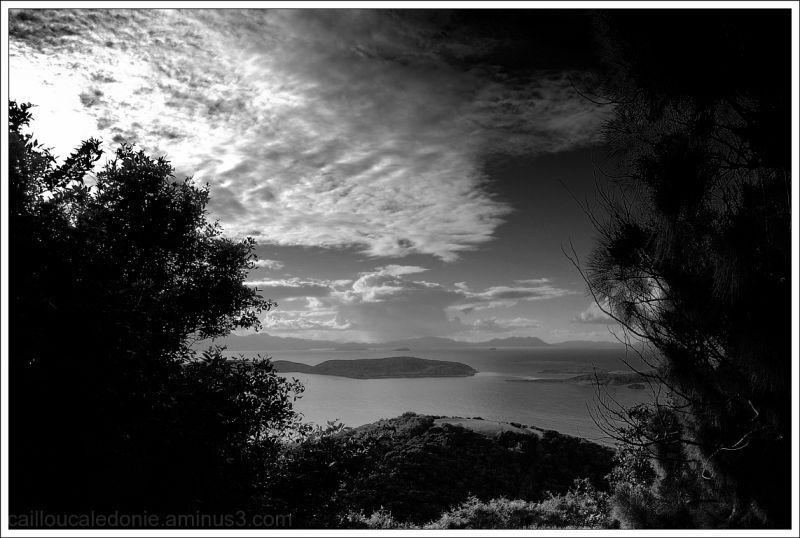 Paysage en noir et blanc de la Calédonie
