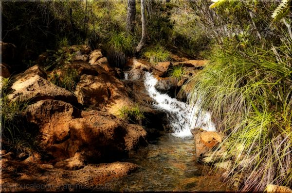 une rivière à Yate en Nouvelle Calédonie