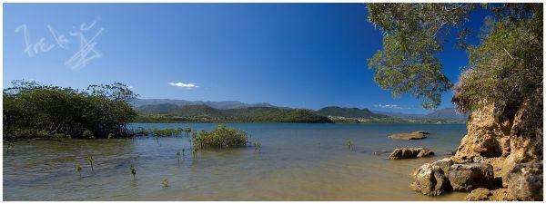 mer et mangrove en Nouvelle Calédonie