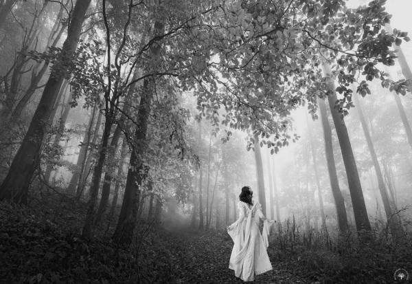 La belle au bois / Beauty in the wood