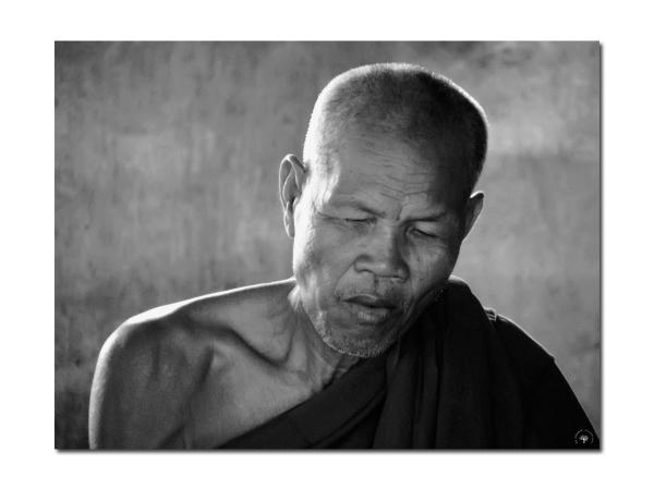 Le moine du Ta Prohm