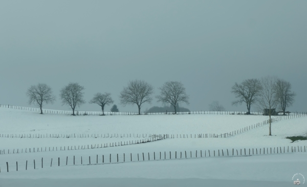 Ciel de neige / Snowy sky