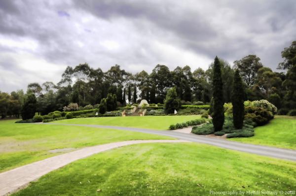 Mediteranian Garden