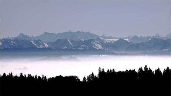 Mer de brouillard