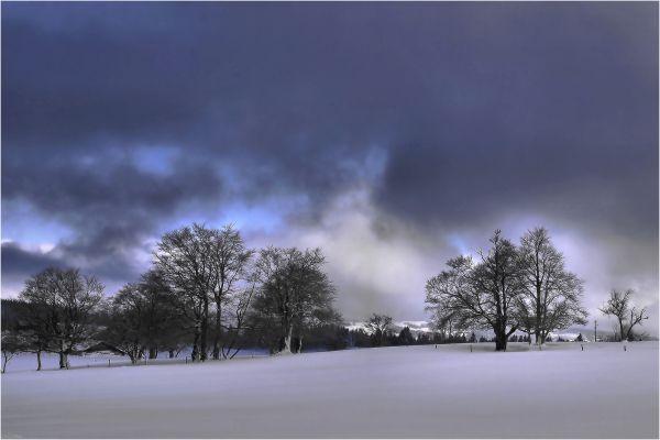 Les frimas de l'hiver